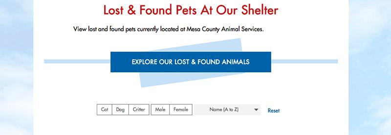 Mesa-at-our-shelter-800