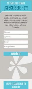 SpanishSubscriptionForm-110x300